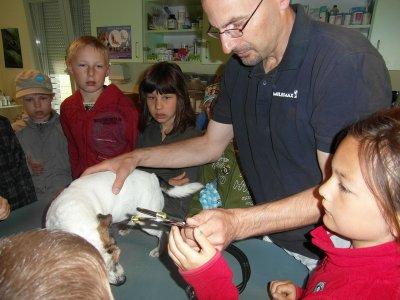 Fotoalbum Besuch beim Tierarzt Dr. Müller in Egeln