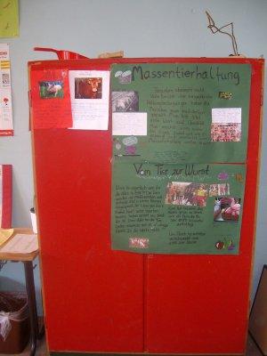 Foto des Albums: Tierschutzprojekt Klasse 7b (09.07.2012)