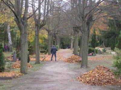 Fotoalbum Laubaktion auf dem Rangsdorfer Waldfriedhof im Oktober 2012