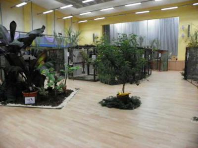 """Foto des Albums: Ausstellung der Vogelfreunde """"Kyritz an der Knatter"""" (06.10.2012)"""