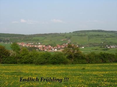 Fotoalbum Endlich Frühling!
