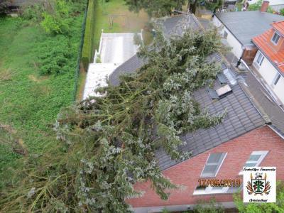 Fotoalbum Baum auf Haus gestürzt