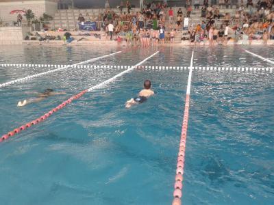 Fotoalbum Schwimmwettbewerb