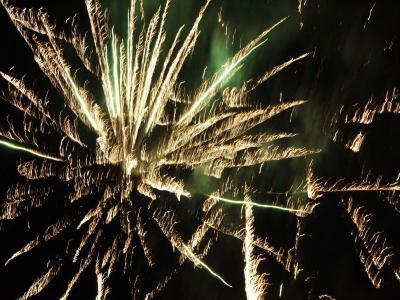Fotoalbum Feuerwerk zur 750-Jahr-Feier Freyensteins