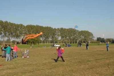 Fotoalbum Drachenfest