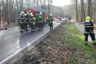Fotoalbum Baum droht umzustürzen Göhrner Dreieck