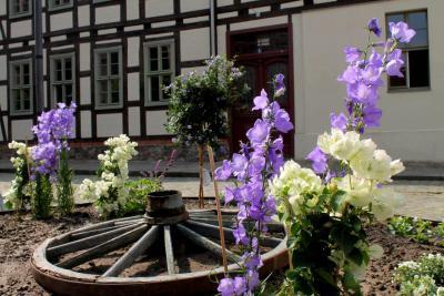 Fotoalbum Blumenbeete auf dem Kirchplatz