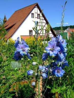 Foto des Albums: Stühlingen! Spuren der Geschichte (15.07.2012)
