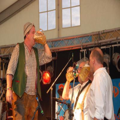 Fotoalbum Festtag 2008 Samstag Wolperdinger