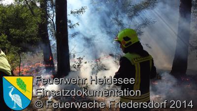 Fotoalbum Einsatz 53/2014 am 28.08.2014 > Waldbrand AS Friedersdorf