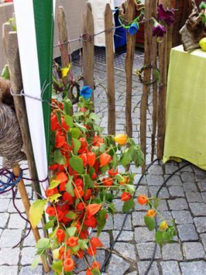 Fotoalbum Impressionen vom Homberger Herbstmarkt 05.10.2014