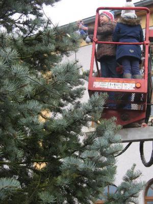 Fotoalbum Unser Weihnachtsbaum 2014