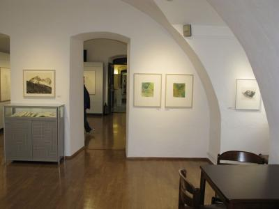 Fotoalbum Ausstellung