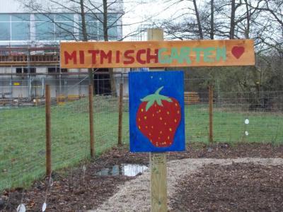 Fotoalbum Urban Gardening II & Multifunktionsplatz