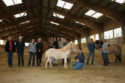 Fotoalbum Kurs Pferdemassage