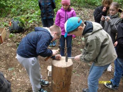 Fotoalbum Waldjugendspiele Klasse 3b
