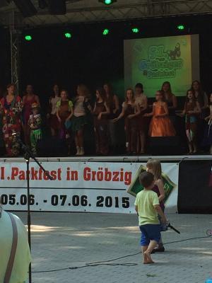 Fotoalbum 51.Gröbziger Parkfest 2015