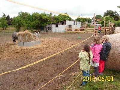 Fotoalbum Ausflug zur Regenbogen Ranch Hohenofen (Kita Köritz)