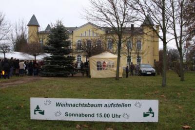 Fotoalbum Aufstellen ds Weihnachtsbaumes in Leezen, Schloßlatz