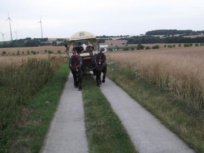 Fotoalbum Kremserfahrt auf dem Eigen