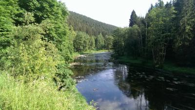 Fotoalbum Herbstwanderung an der Saale