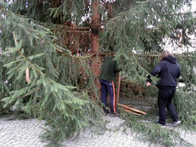 Wann Weihnachtsbaum Aufstellen.Gemeinde Tauche De Weihnachtsbaum Aufstellen 2015