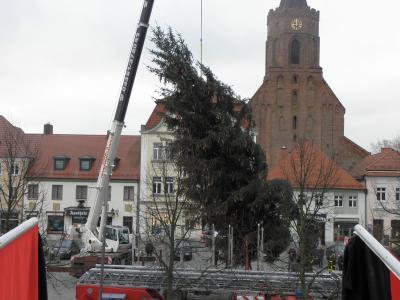 Fotoalbum Weihnachtsbaum aufstellen 2015