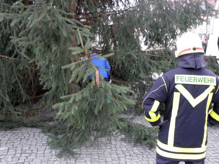 Wann Weihnachtsbaum Aufstellen.Friedland Weihnachtsbaum Aufstellen 2015