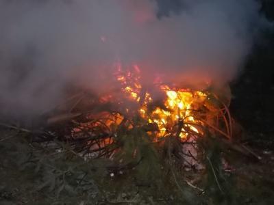 Fotoalbum Weihnachtsbaum verbrennen 2016