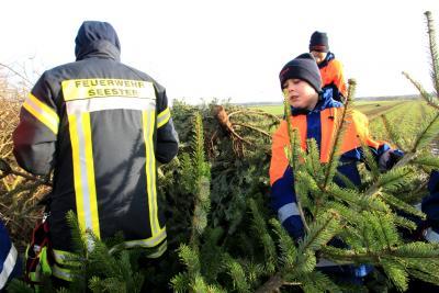 Fotoalbum Weihnachtsbaum-Verbrennfest der JF Seester