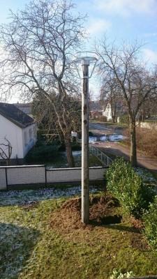 Fotoalbum Mast für den Storchenhorst