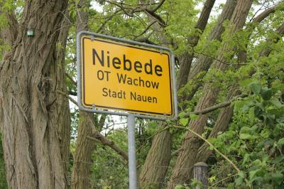 Fotoalbum Fohlenkuscheln in Niebede
