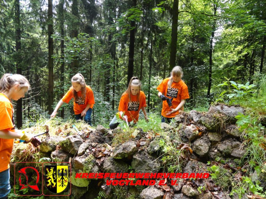 Foto der Galerie: Jugendfeuerwehr Rohrbach beteiligt sich an 48h Aktion des VKJR