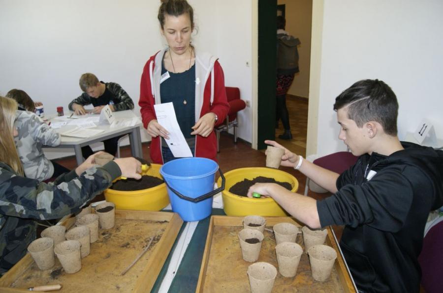 Foto der Galerie: Berufsorientierungsrallye der 7. Klassen