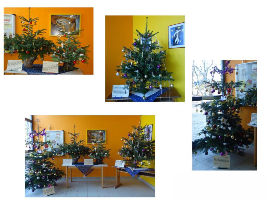Der Letzte Weihnachtsbaum.Grundschule Neustift Christbäume Im Wandel Der Zeit
