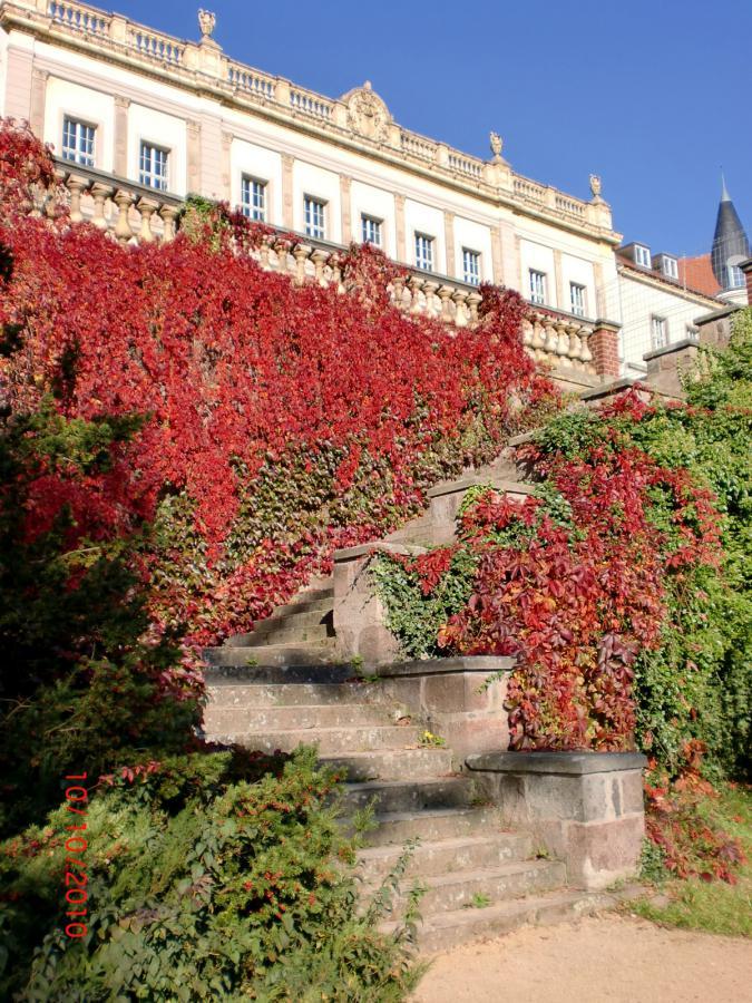 Foto der Galerie: Der Park im Herbst