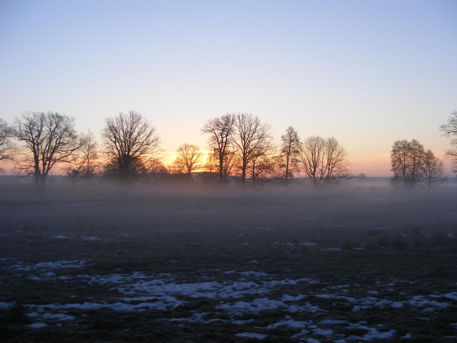 Foto der Galerie: Der Park im Winter