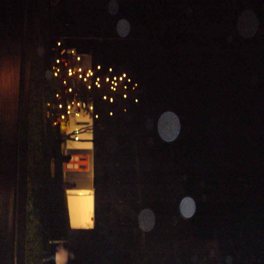 Foto der Galerie: Weihnachtsbaum aufstellen