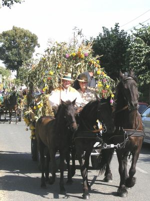 Erntedankfest 2004