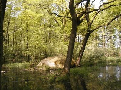 Riesenstein bei Ponitz