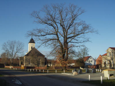Kirche und Friedenseiche