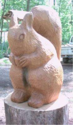 Eichhörnchen im Arboretum