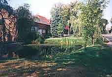 Gepflegter Dorfteich im Zentrum des Ortes