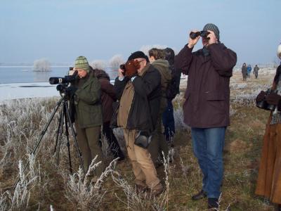 Besucher bestaunen die Vogelwelt