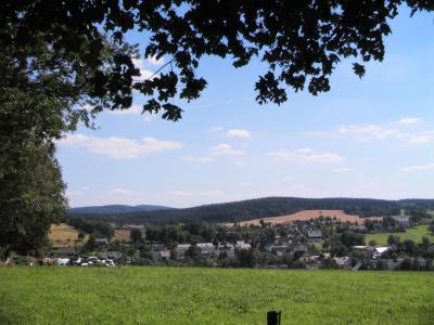 Blick über das Dorf zum Bornwald