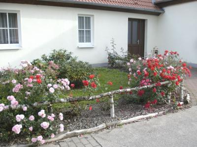 Das Dorfgemeinschafthaus - Ort für Begegnungen und Vereinsleben
