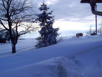 Winter auf der Hohen Geba