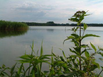 Königsberger See