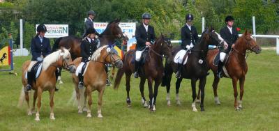 ein Teil der Flarchheimer Reiter und Pferde zum Turnier in Großengottern