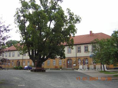 Schlosshof mit Amtslinde
